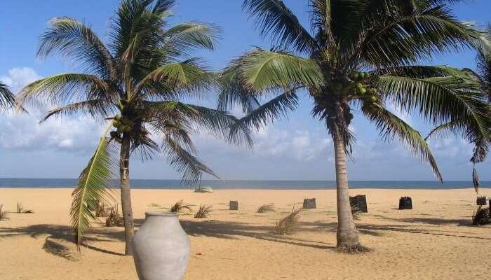 Cosas que usted debe saber antes de visitar la playa de Hikkaduwa