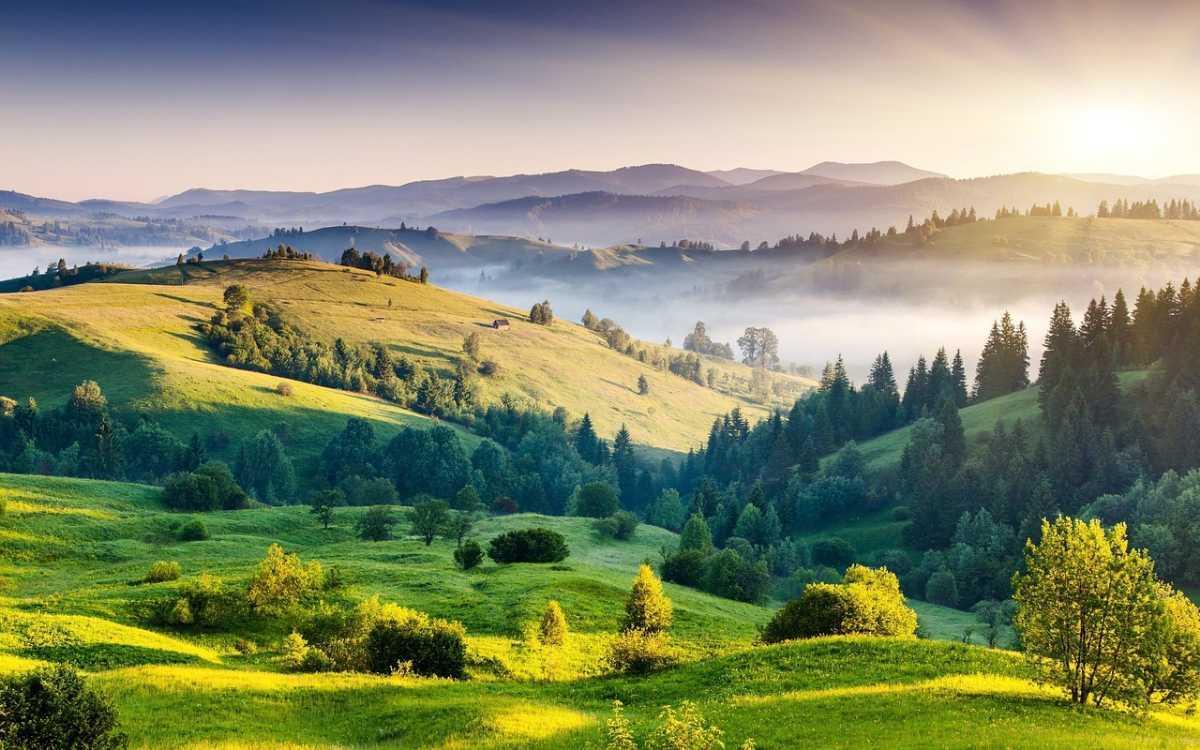 Los Mejores lugares para disfrutar de la Naturaleza en la India