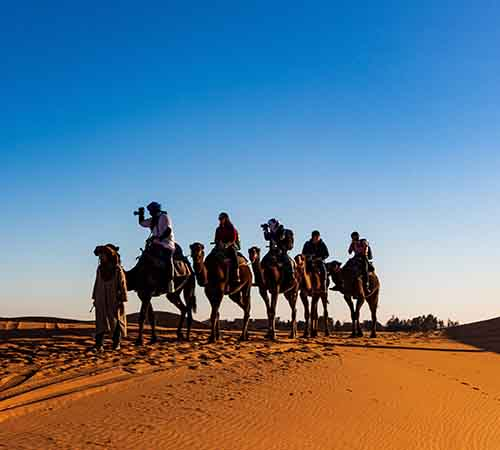 Paquete Rajasthan Camel Safari Tour